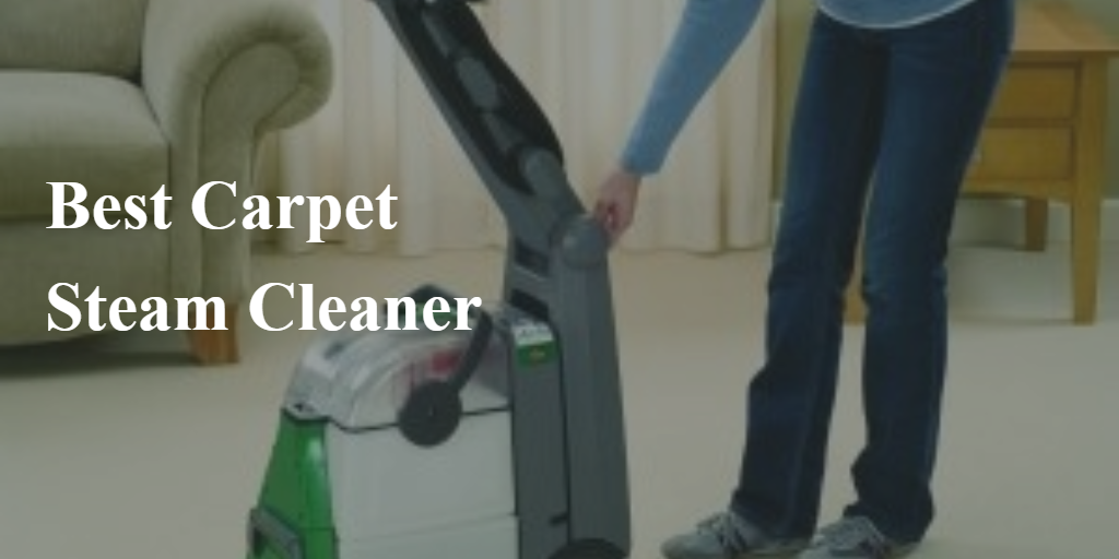 Best Carpet Steam Cleaners For Pet Stains MenzilperdeNet
